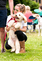 Canary woof dog show. London event photograhy.