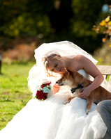 Post Wedding Photo Shoot Stockgrove Country Park Bedfordshire