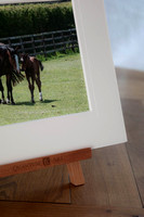 Bespoke Mounted Prints