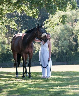 Horse portrait photography Oxfordshire