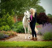 Horse photography Quainton Bucks