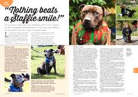 Staffie Article in August 2016 issue of Dogs Monthly magazine.